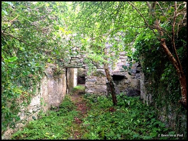 Grace O'Malley ruins