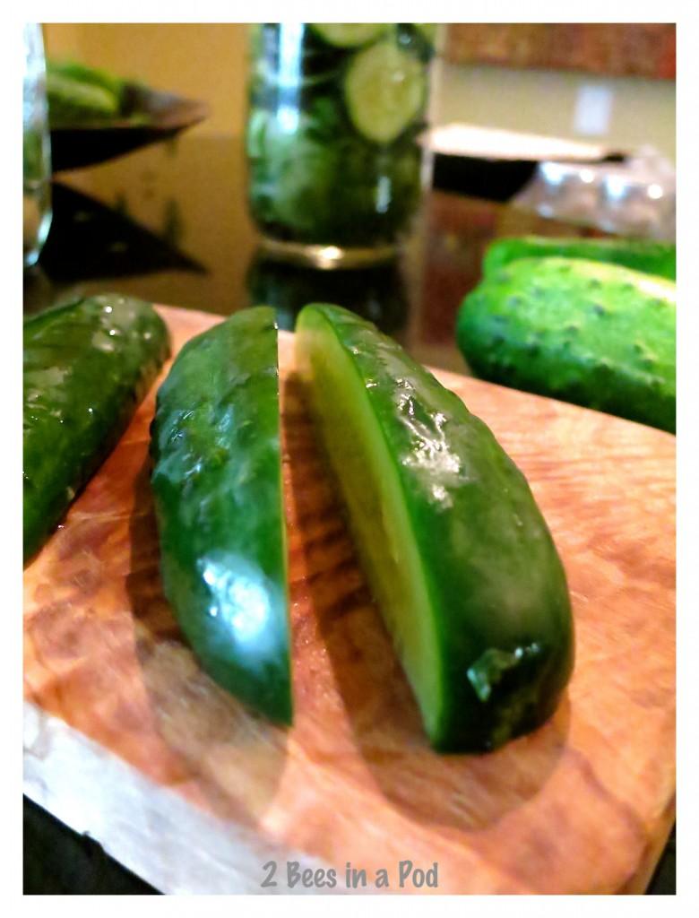 Farm-fresh Kirby cucumbers