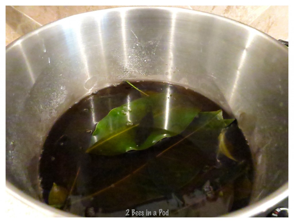 After two hours of boiling the leaves are ready to reveal their inner skelton - the water becomes pretty gross