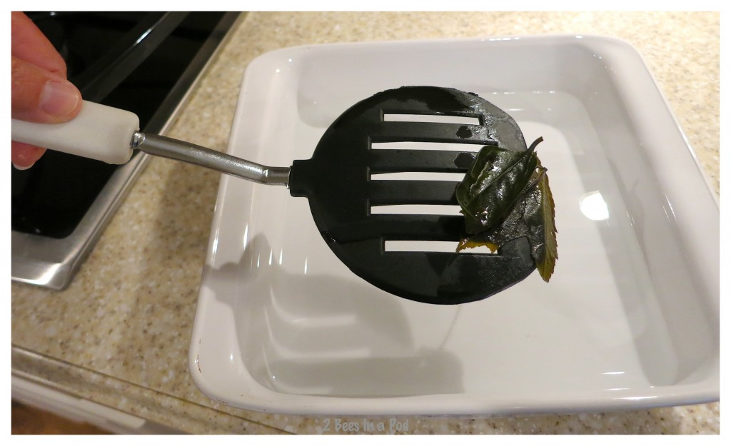 Place the boiled leaves in a cool water bath to begin the skeleton process. How to make skeleton leaves.