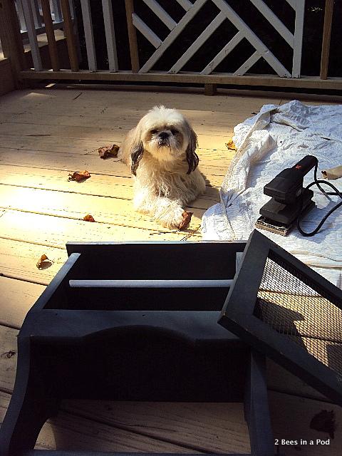 My little helper