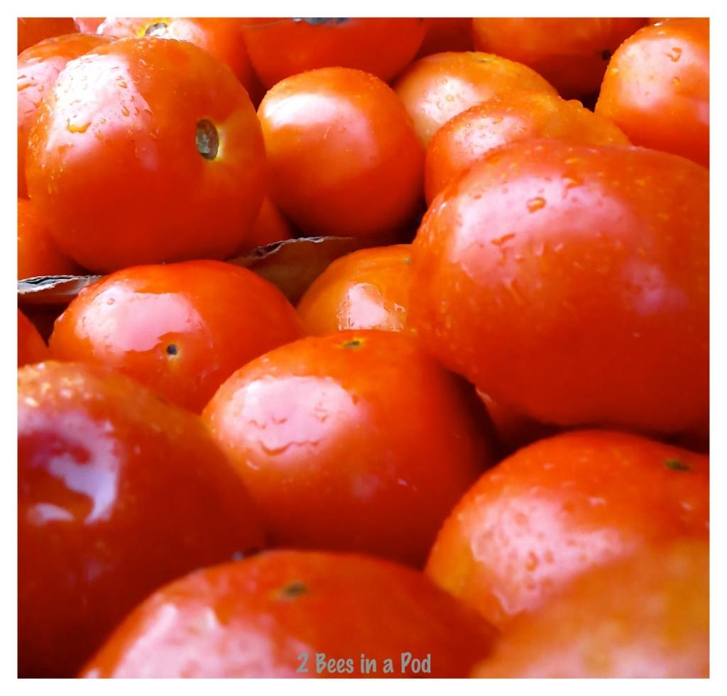 Fresh picked Florida tomatoes