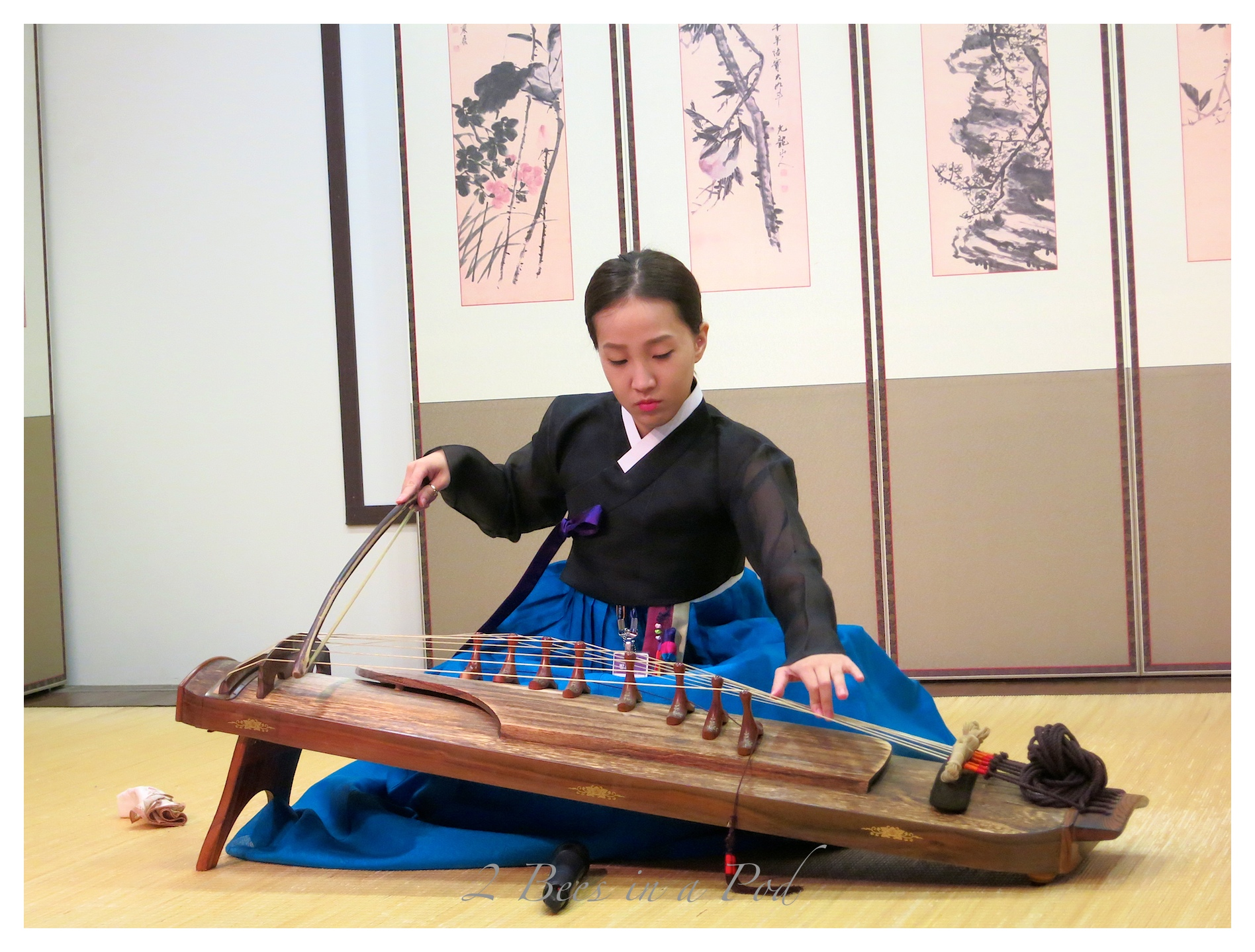 Absolutely gorgeous women performing traditional music in traditional dress.