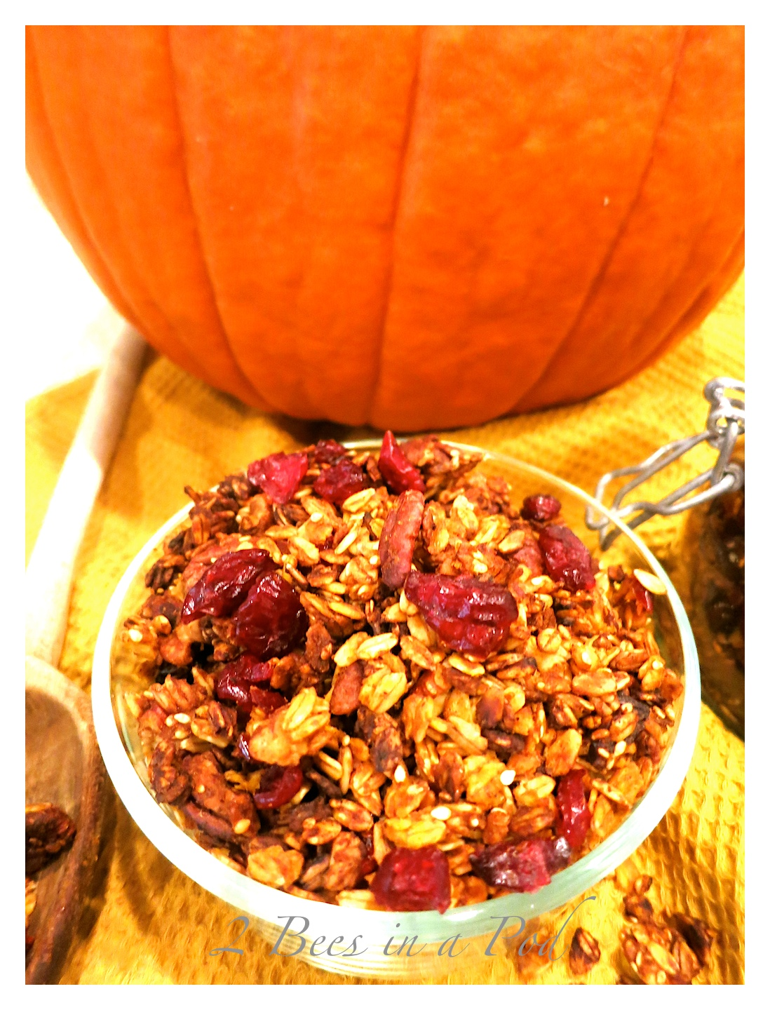 Southern Pecan Pumpkin Spice Granola…and I made it Weight Watchers friendly…