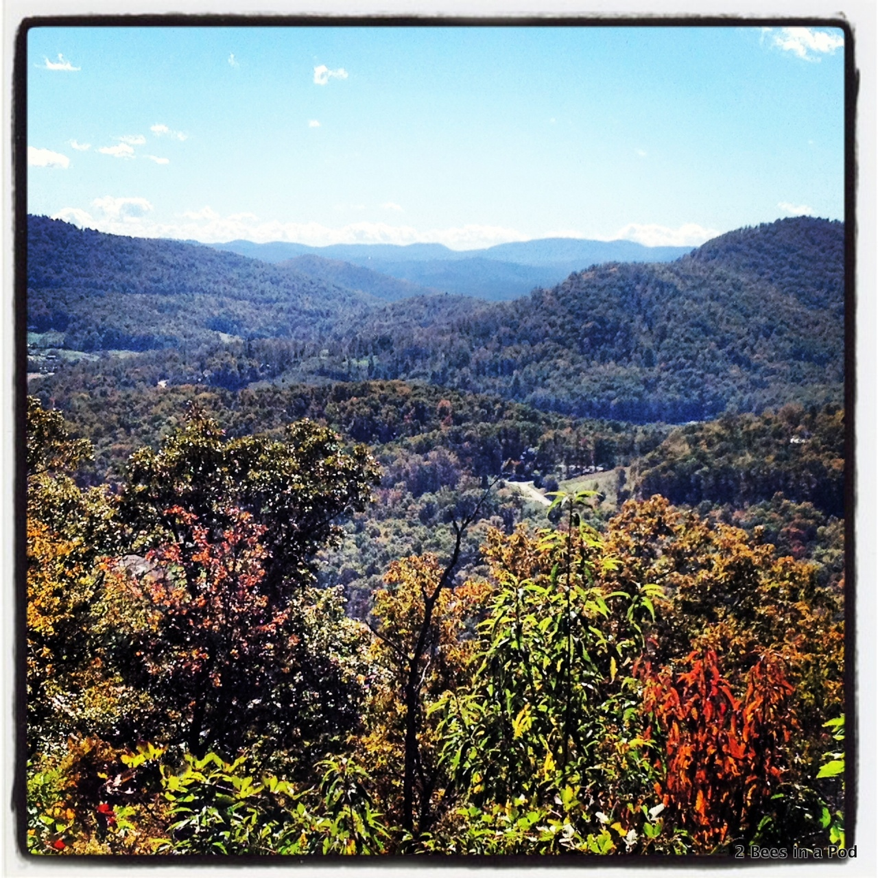 View from Blue Ridge Parkway in Asheville. Leaves changing colors. Fall in the Mountains