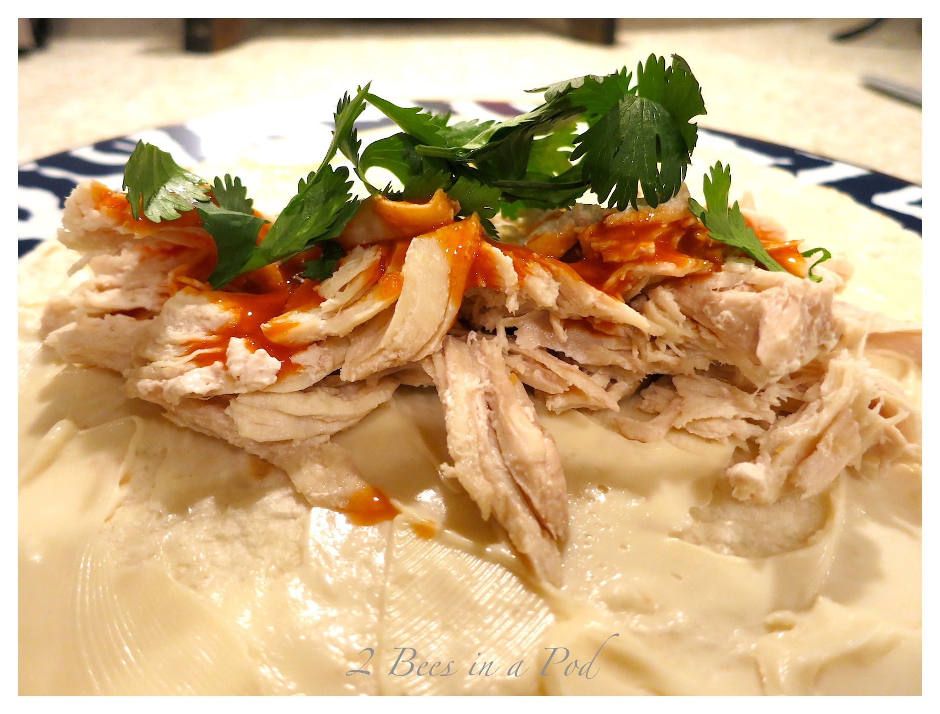 Buffalo Chicken Wrap…Quick Dinner Recipe for the Holidays – and it's Weight Watcher Friendly