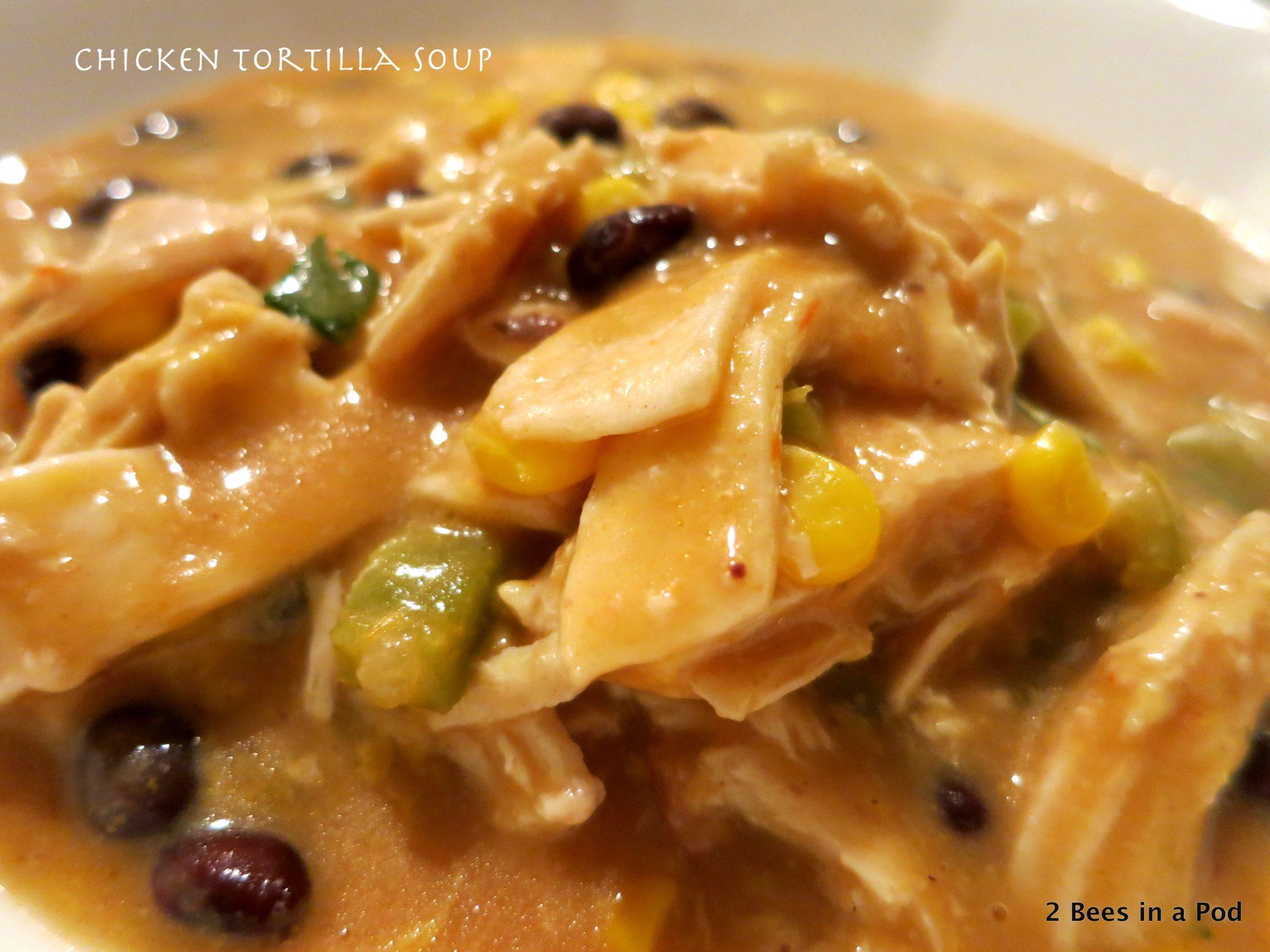 Slow Cooker Chicken Tortilla Soup...yum!