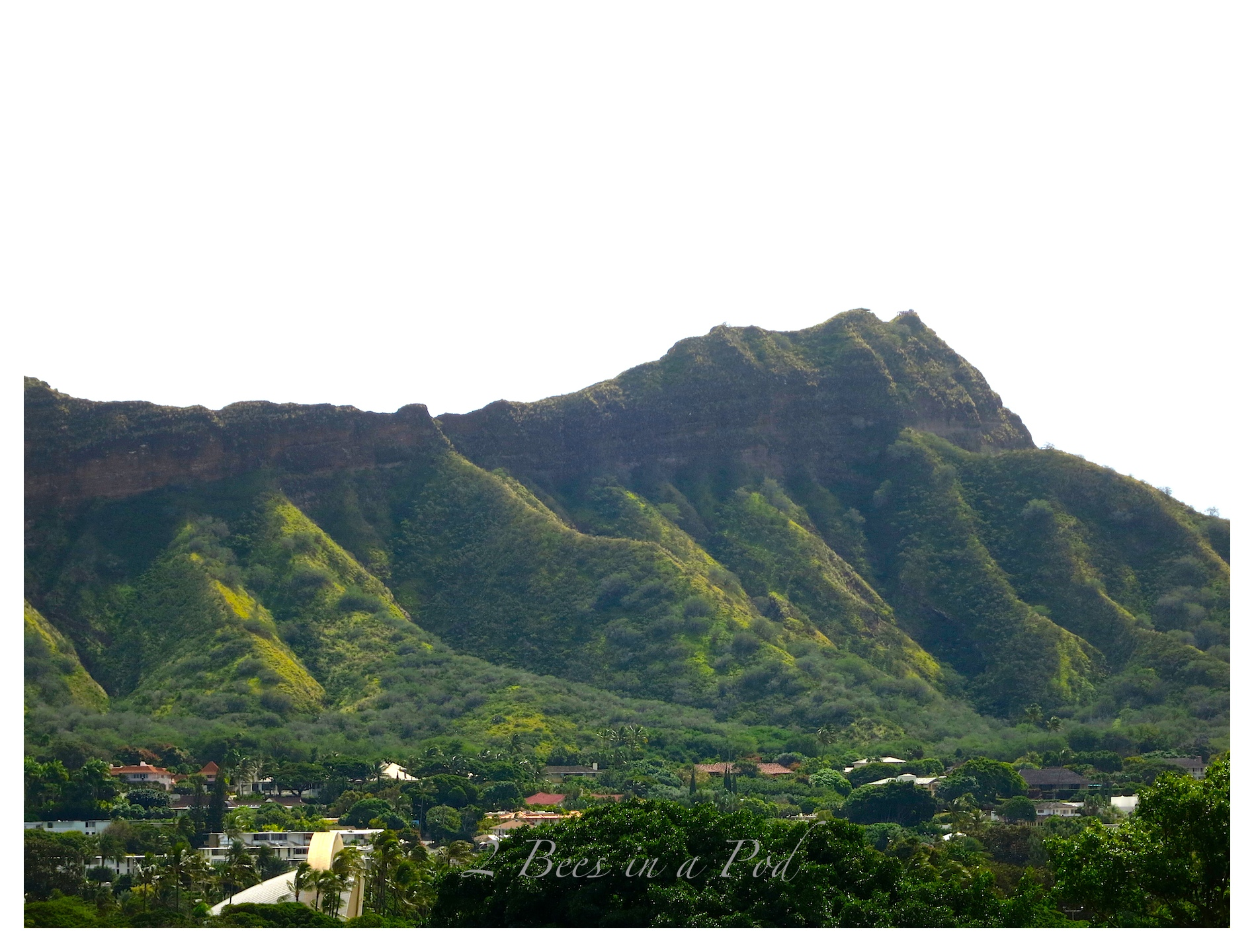 And right out our front door...Diamondhead
