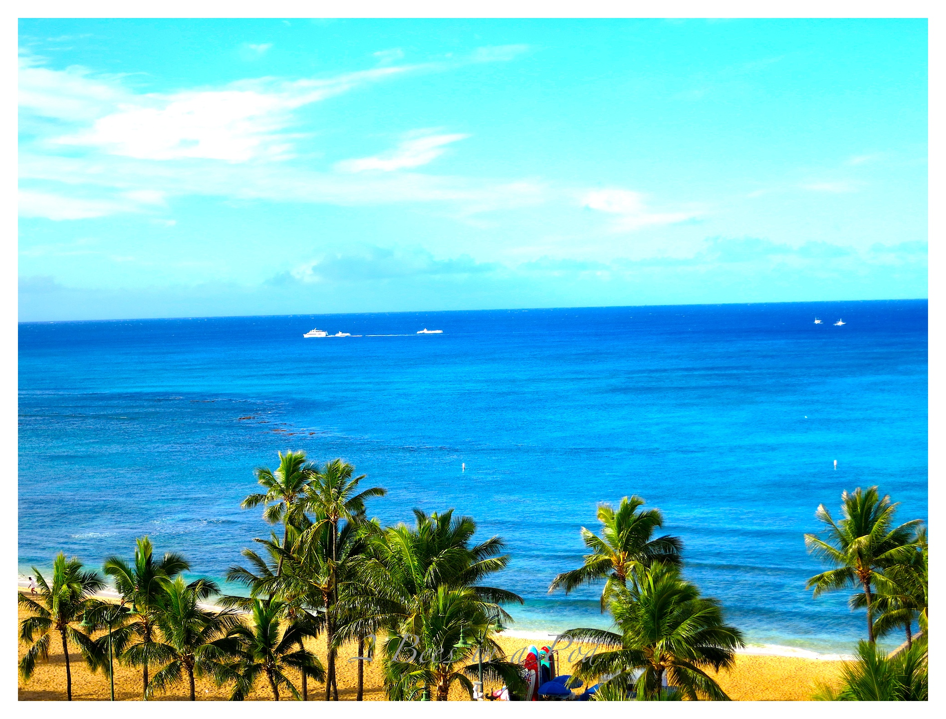 Hawaiian Vacation – Oahu