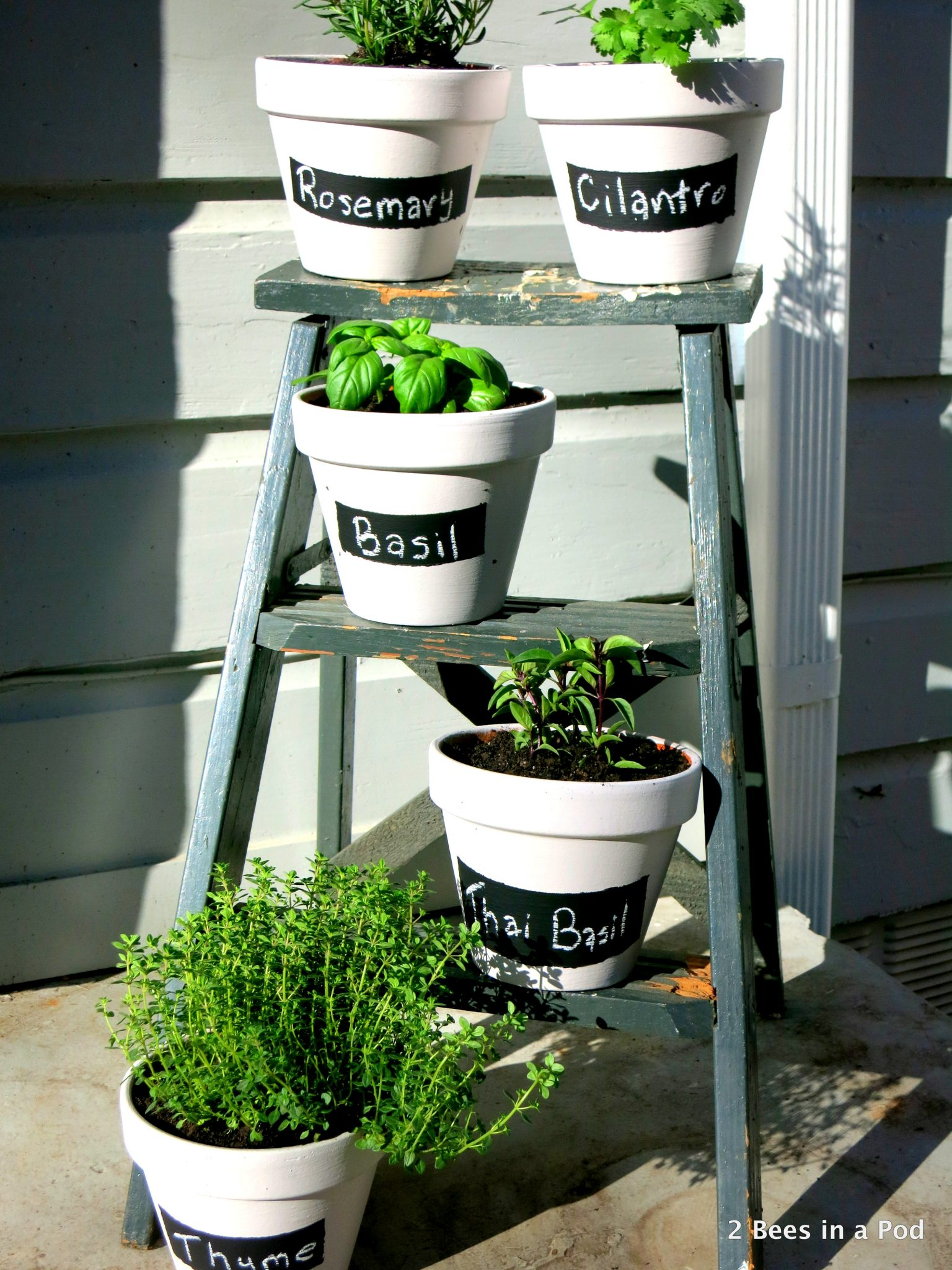 DIY Herb Garden with painted terracotta pots, chalk paint labels, and repurposed step ladder