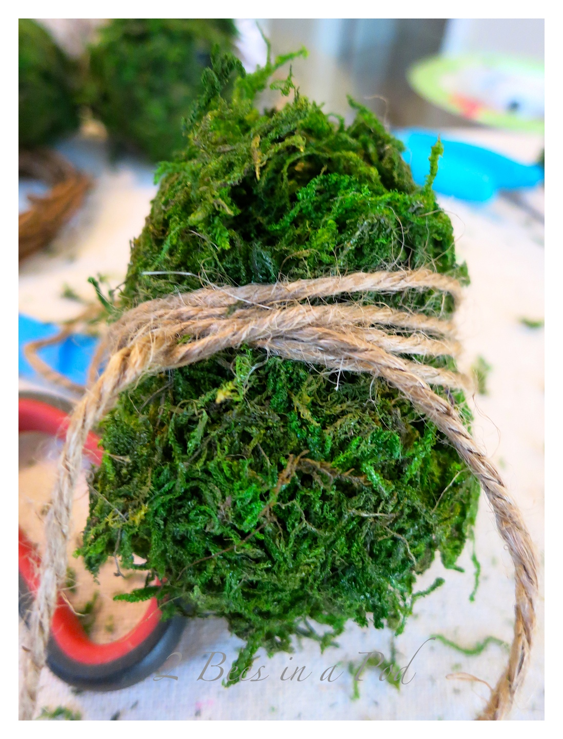 DIY Moss Covered Eggs…
