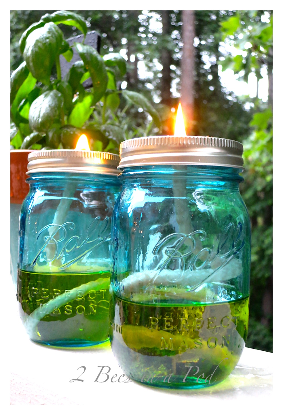 DIY Mason jar citronella candle oil lamp