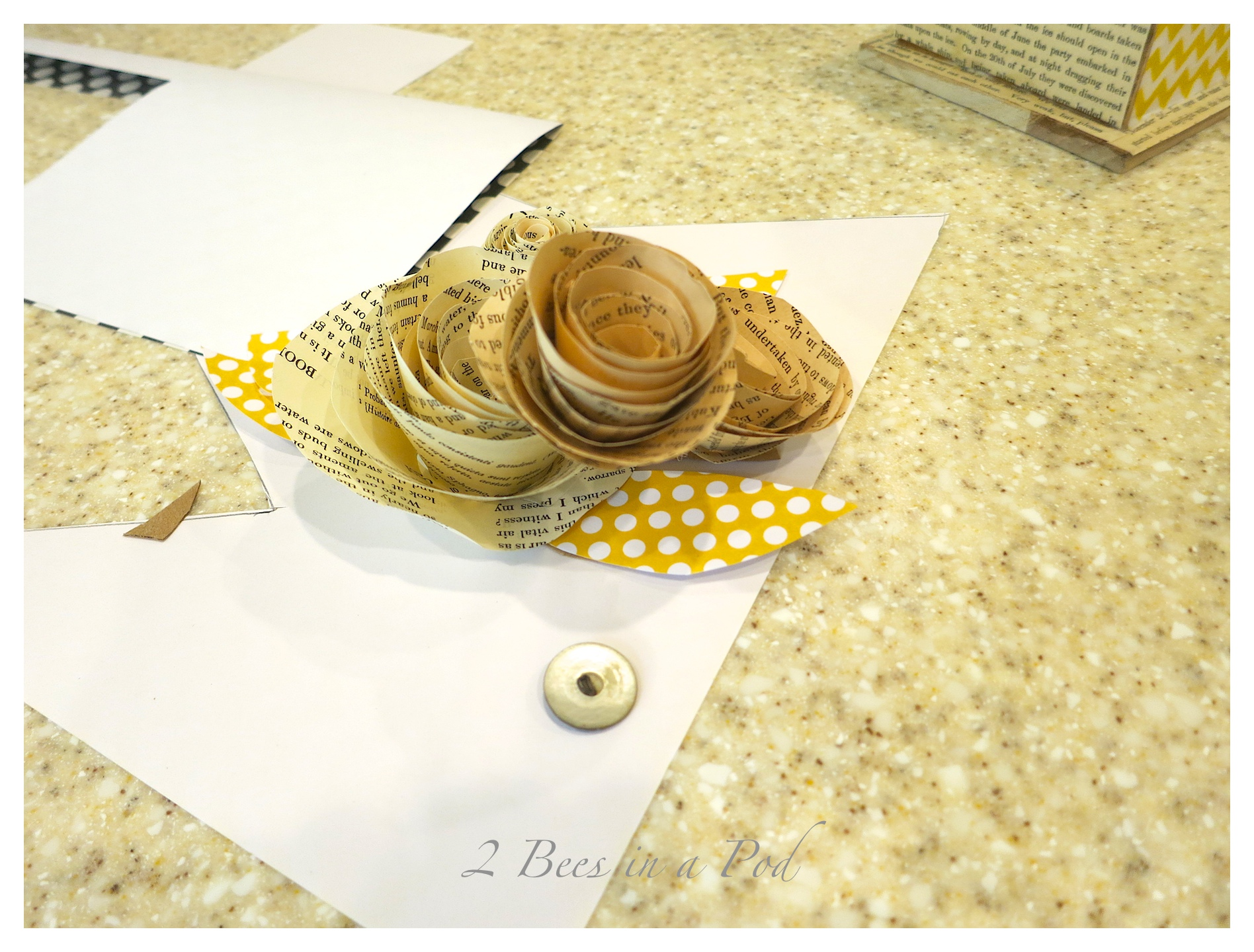 Create a decorative birdhouse. we usedd Mod Podge. scrapbook paper, antique book pages and a pre made birdhouse. For added decoration we made flowers from the antique book pages.