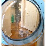 How To Clean Your Front Loading Washing Machine…and Get Rid of the Musty Smell