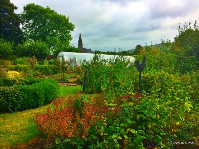 Kitchen Garden in Ireland