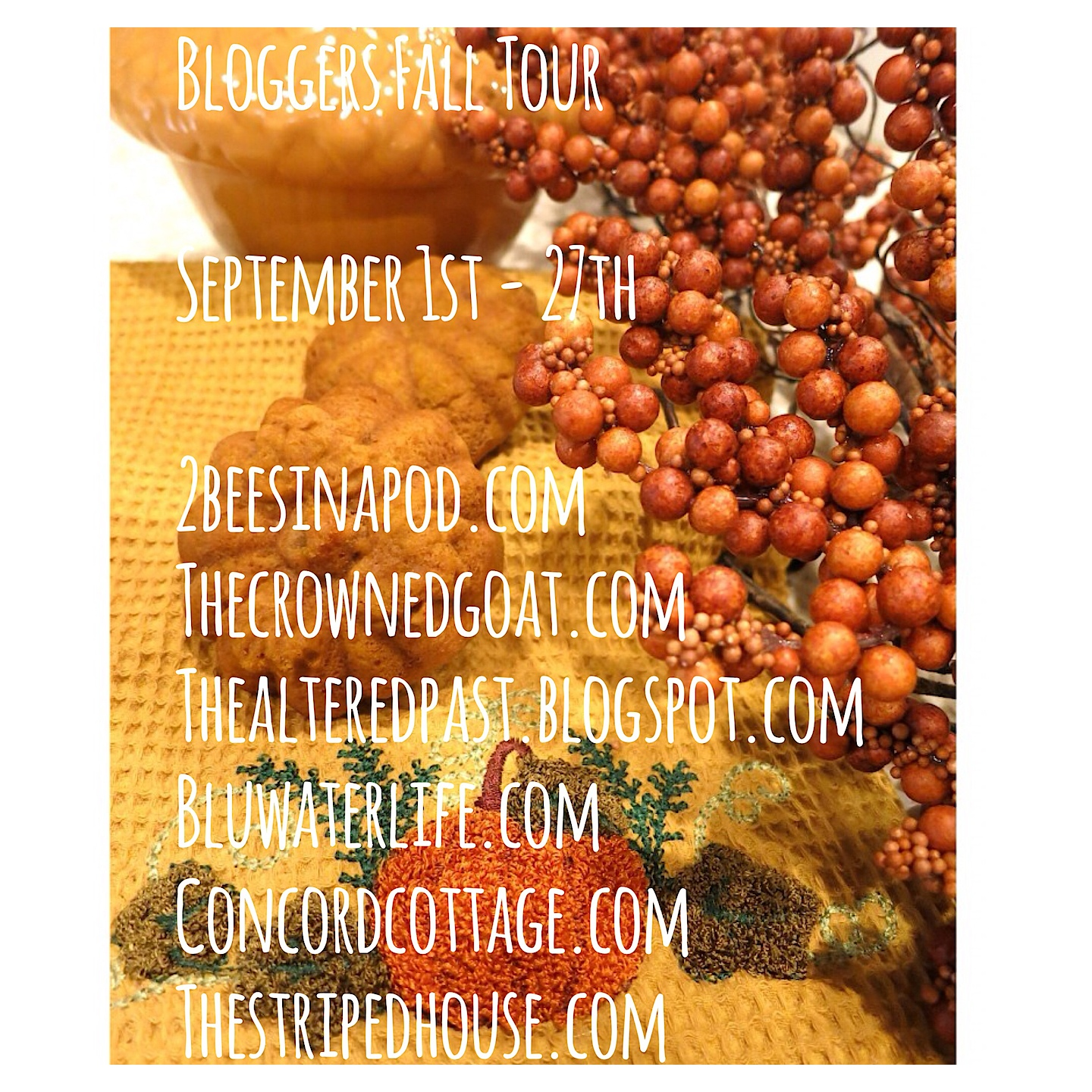 Fall Blog Tour 2014