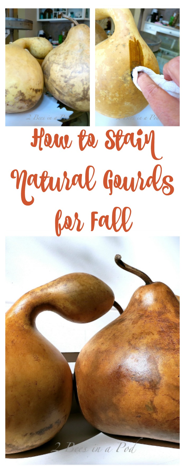 Staining natural gourds can be risky, but the risk was worth the reward. The natural gourds have a beautiful sheen and are perfect for Fall.