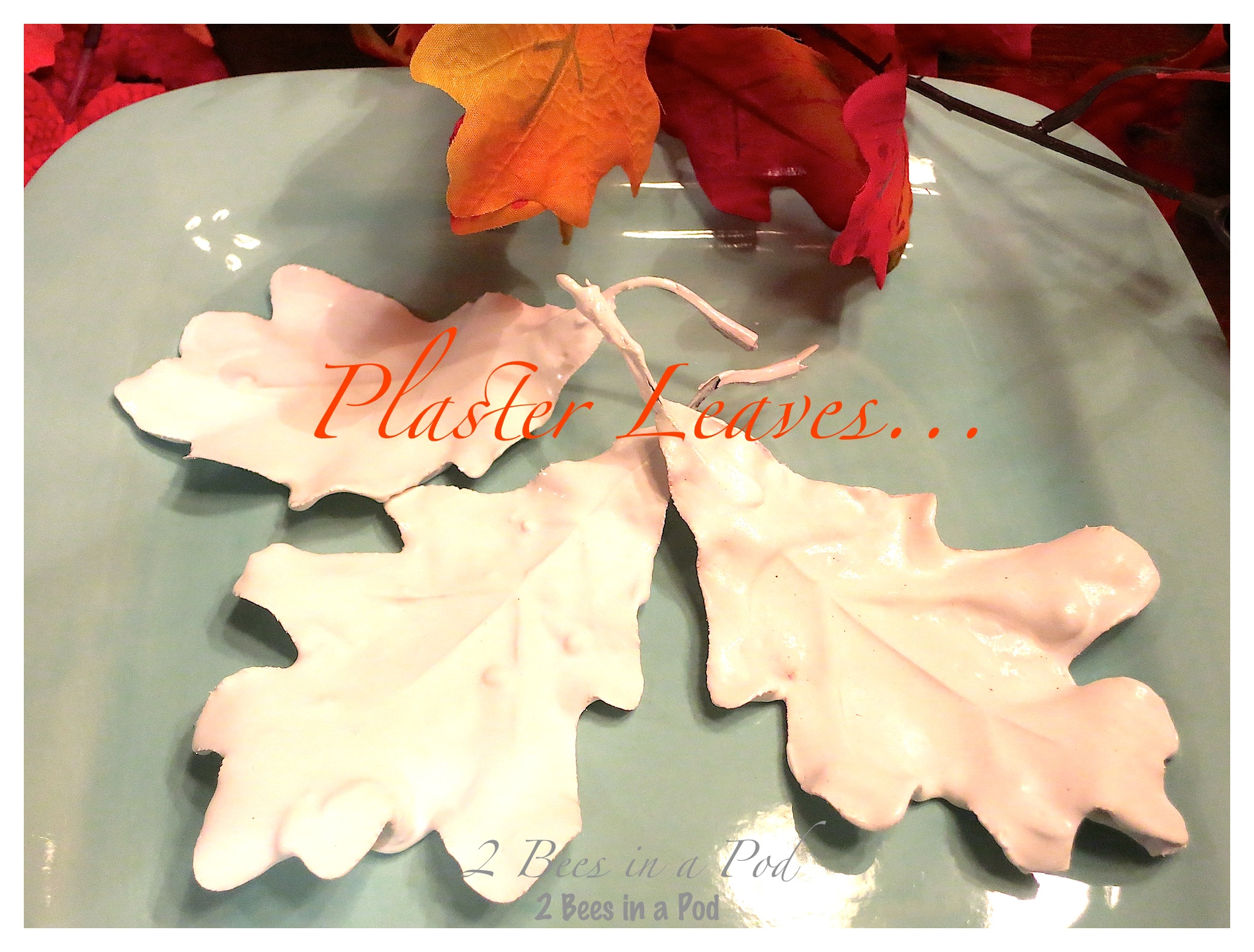 Make your own plaster leaves. Start by using silk Fall leaves from the Dollar Store and add plaster of Paris.
