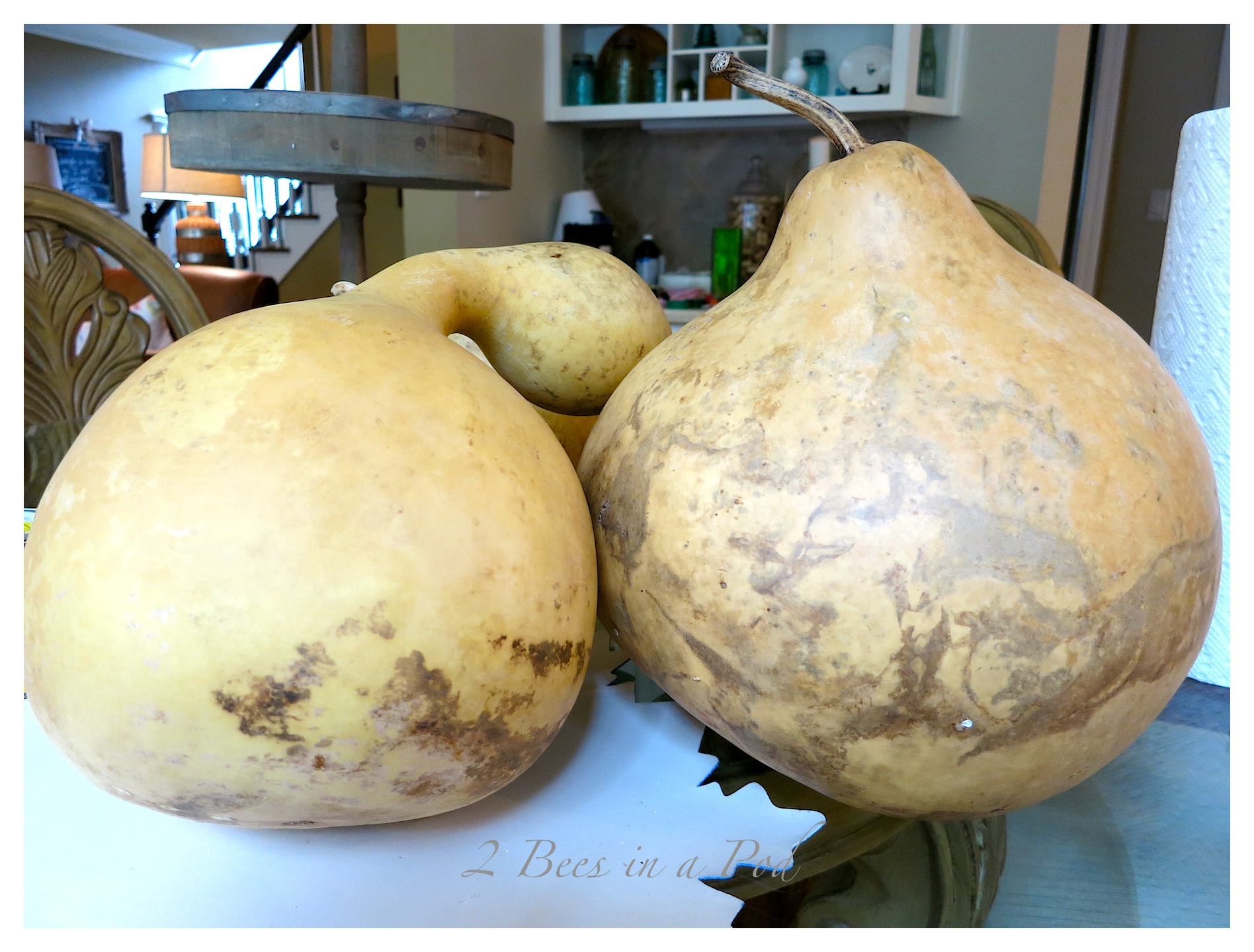 The natural gourds are beautiful, but were too light for Fall decor. With a little bit of stain, it really makes them pop.