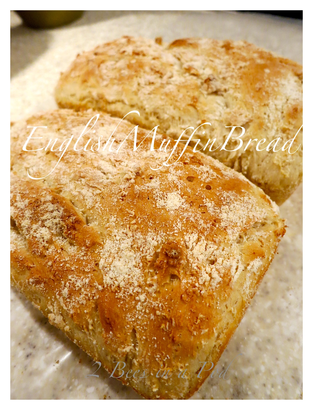 Easy to bake - English Muffin Bread. Freezes very well!