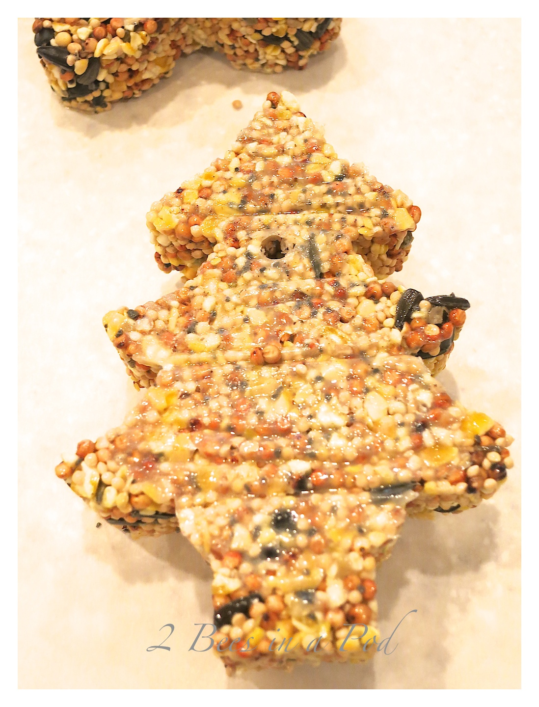 DIY Birdseed Cakes...perfect hostess gift, teacher gift, bird lover, nature lover. Winter is the perfect time of year to feed the birds.