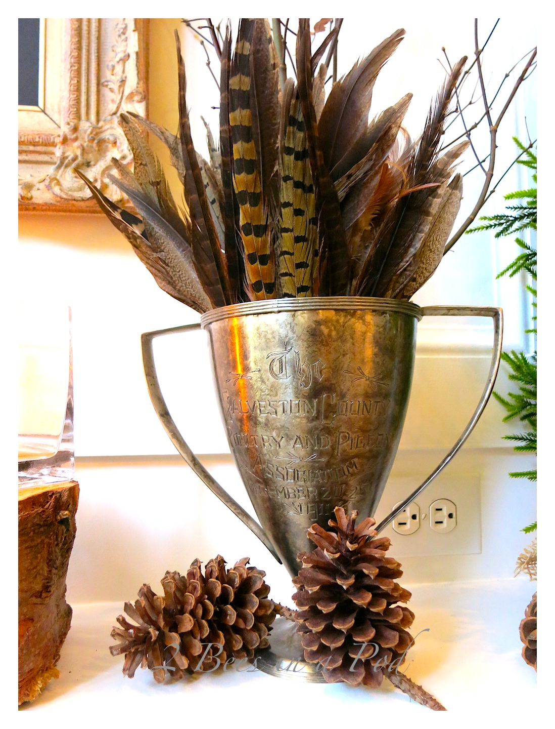 Winter Mantel Decor - natural elements of twigs,wood,  pinecones, cotton and feathers enhanced by candlelight and deer bust