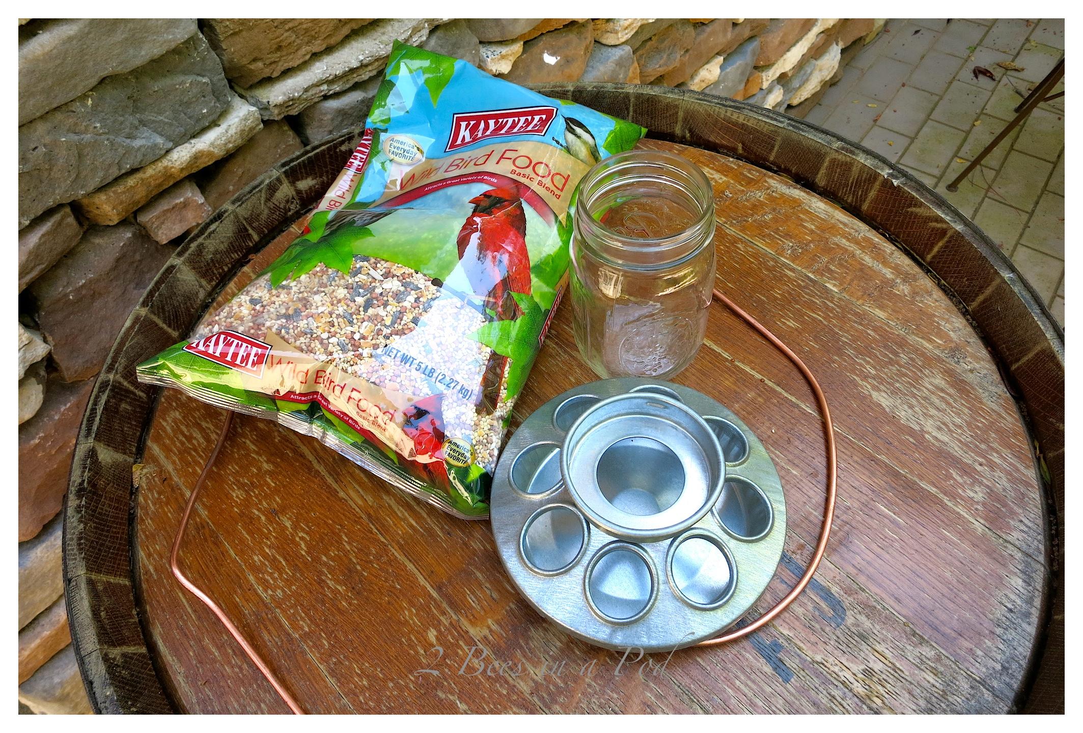 DIY Bird Feeder in Less Than 3 Minutes…