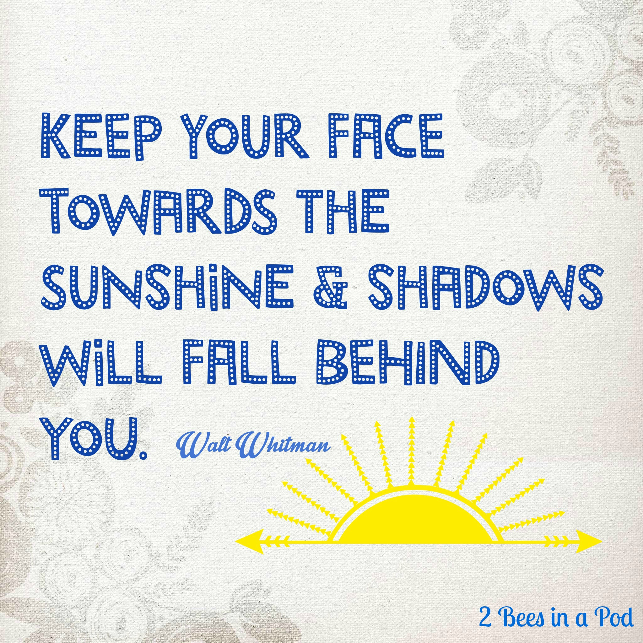 Favorite Quote - Keep Your Face Towards The Sunshine & Shadows Will Fall Behind - Walt Whitman