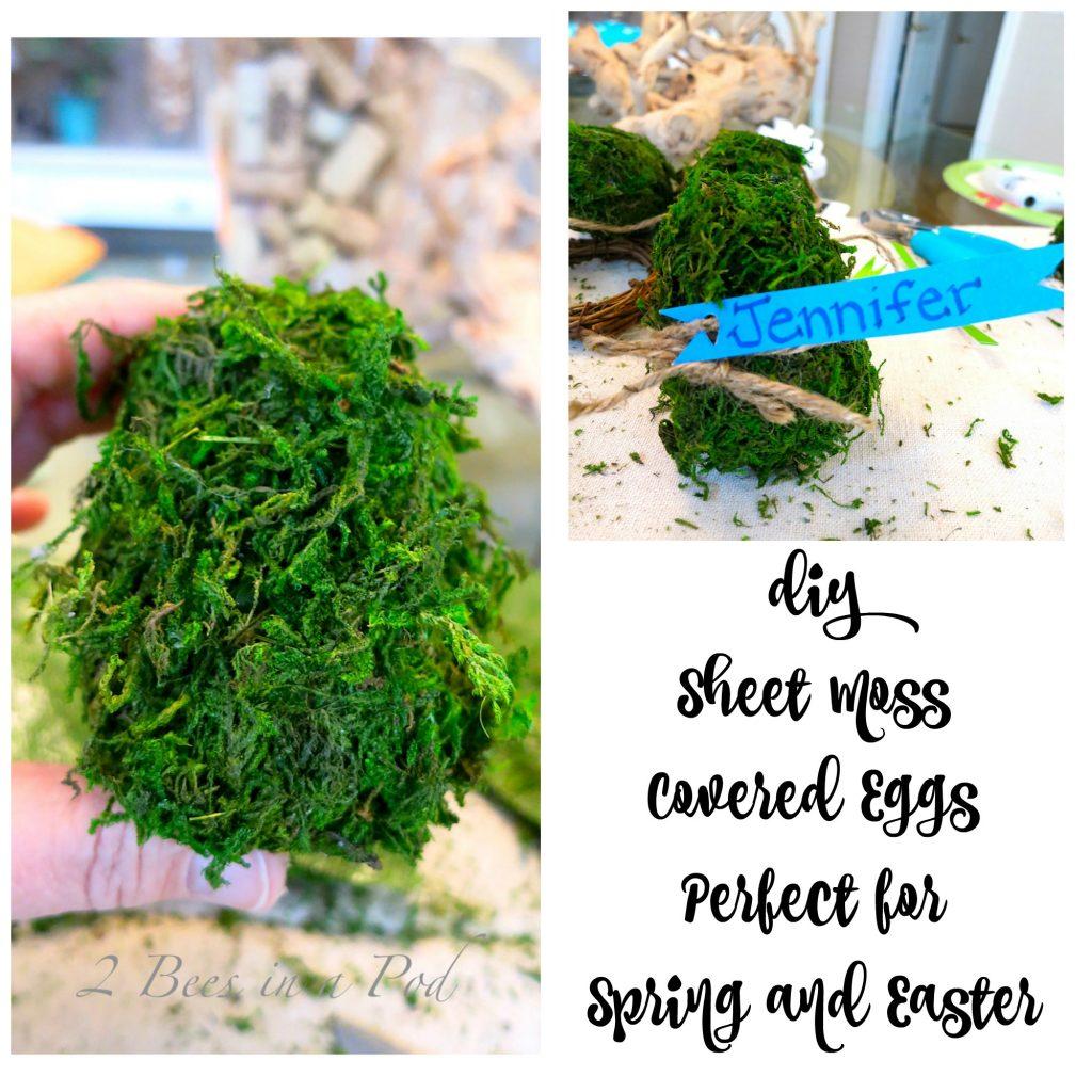 Sheet Moss Eggs Collage