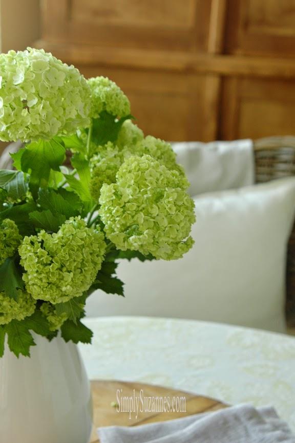 white hydrangea 1-2