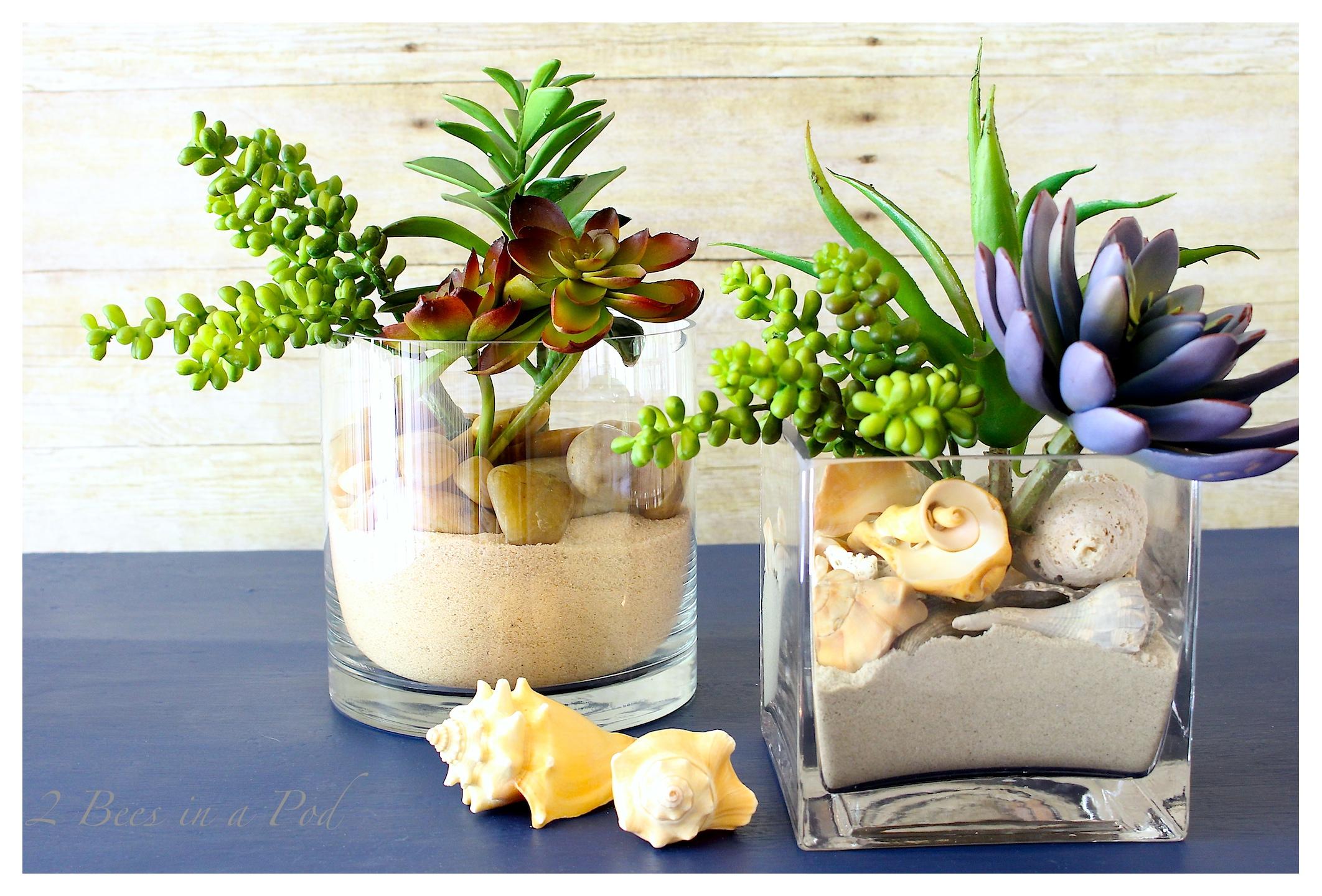 Coastal Inspired Succulent Garden - beach sand, shells, rock, succulents