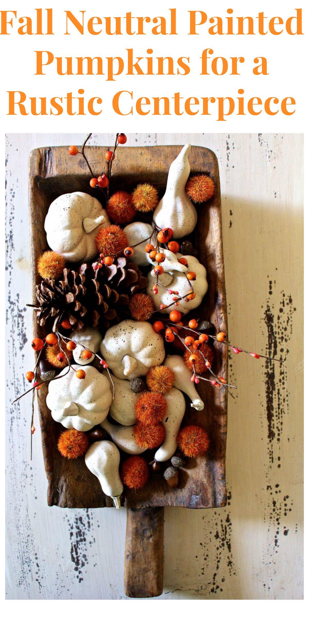 DIY - Fall Neutral Painted Pumpkins.