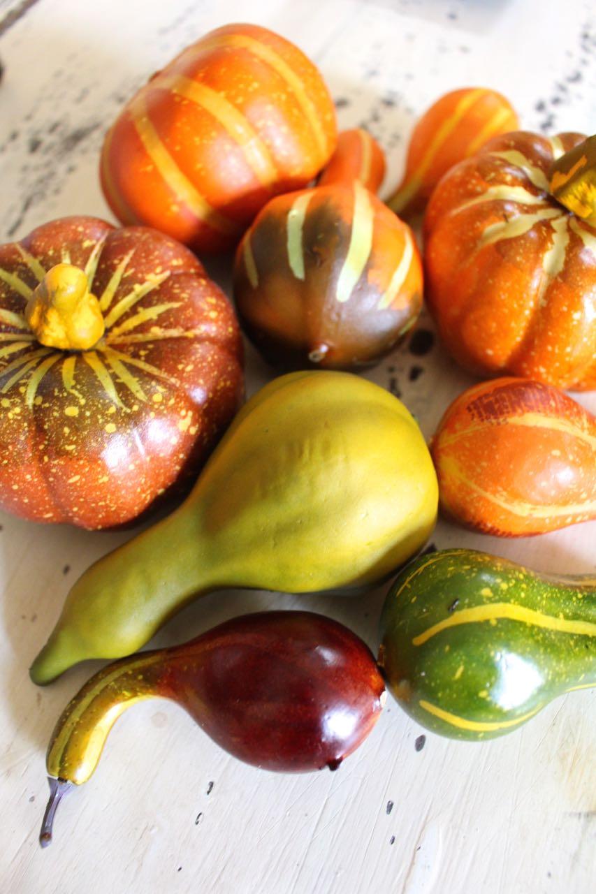 Fall neutral painted mini pumpkins. White pumpkins.
