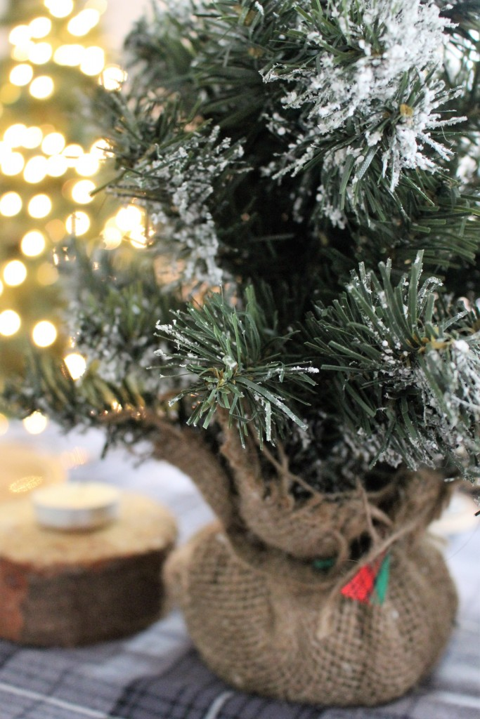 Easy Place Card and Christmas Tablescape