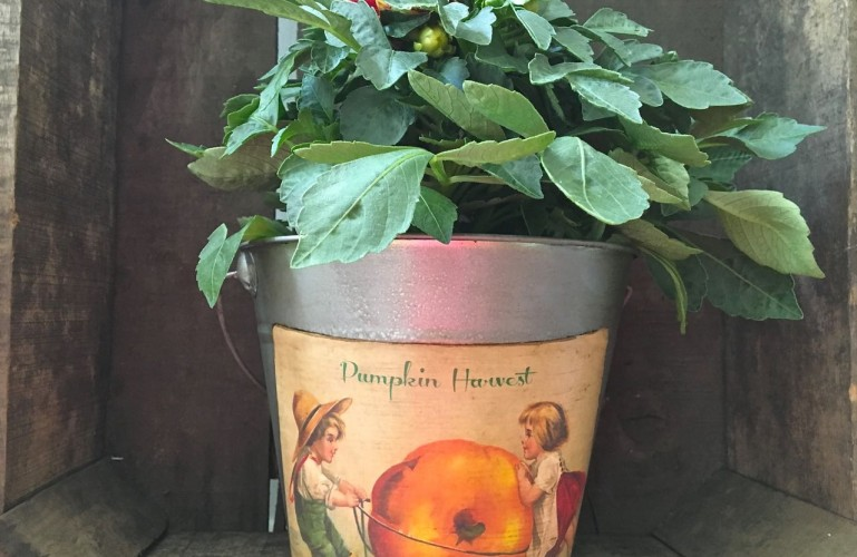DIY Galvanized Bucket for Fall
