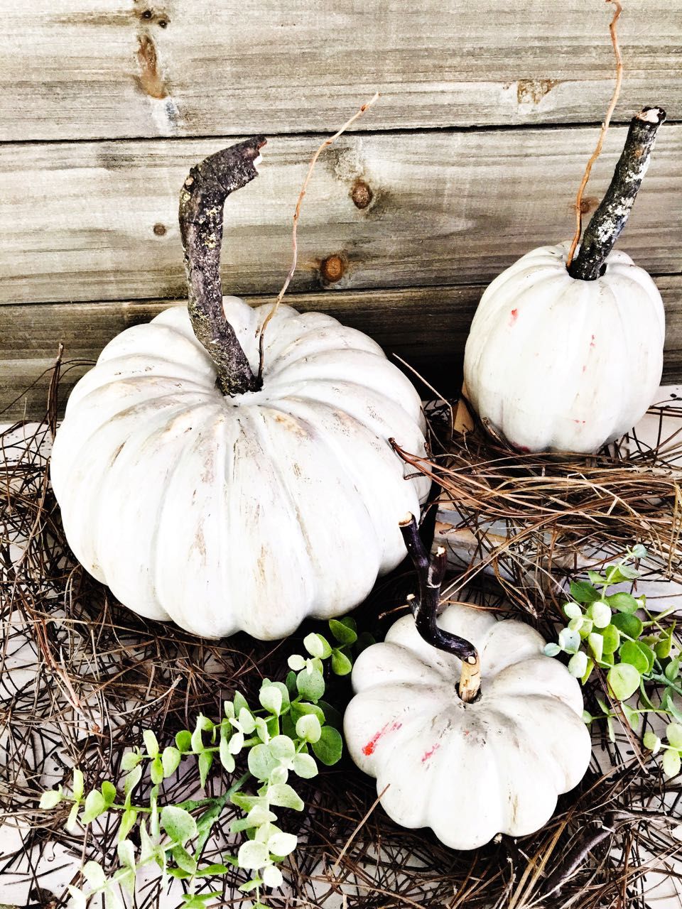 Painted Pumpkins and DIY Stems