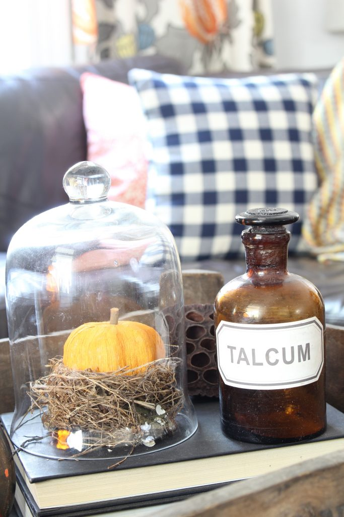 Fall home decor with vintage bottle, books, and nest. Fall home tour.