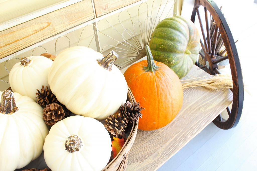 Pumpkins for Fall front porch.