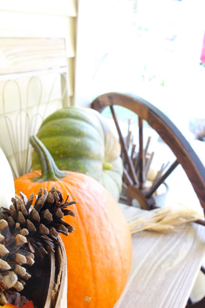 Pumpkins and pine cones on fall front porch.