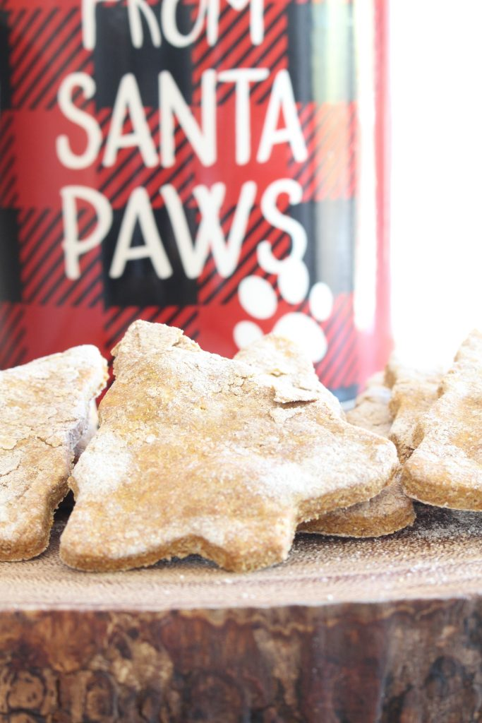 Homemade Dog Treats for Christmas. Made with peanut butter and pumpkin.