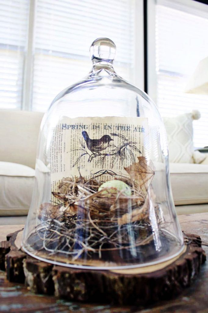 2 Bees in a Pod. Spring Book Page Art. Nest found in nature under a glass cloche.