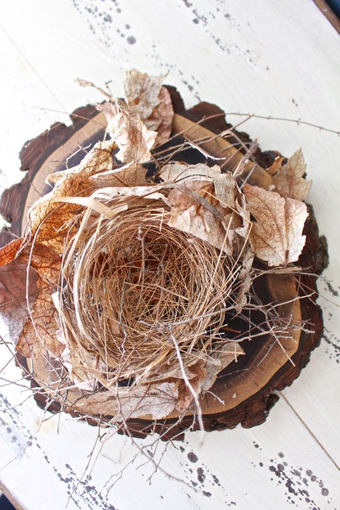 2 Bees in a Pod. Spring Book Page Art. Real bird nest found in nature.