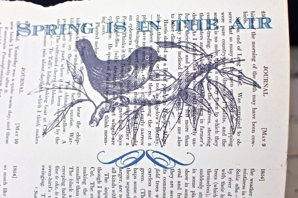 Spring book page art printed on vintage book page.