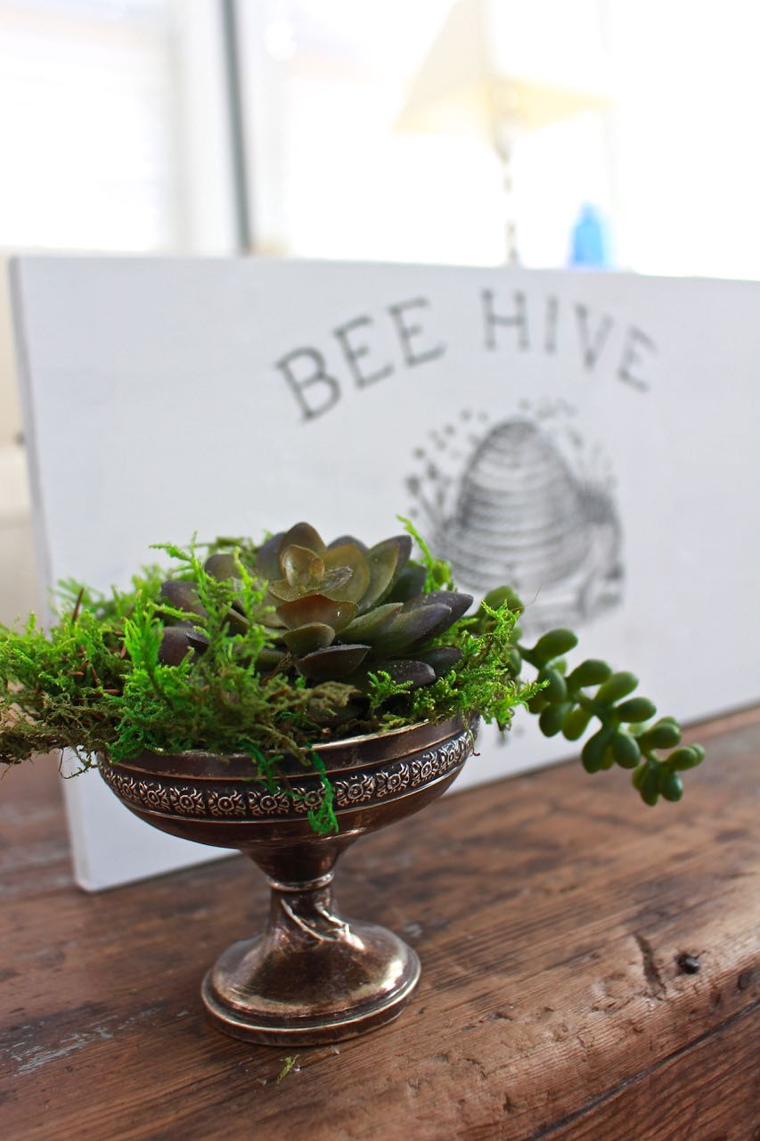 DIY Bee Hive Sign. Faux succulents planted in vintage sugar bowl.