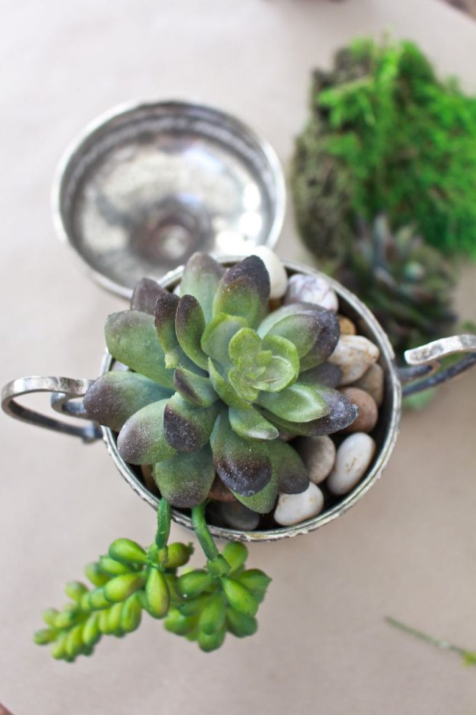 Succulents in Vintage Silver Sugar Bowls