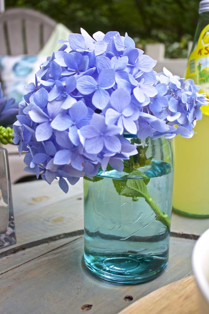 Summer garden and porch tour. Blue hydrangea in vintage turquoise Ball jar.