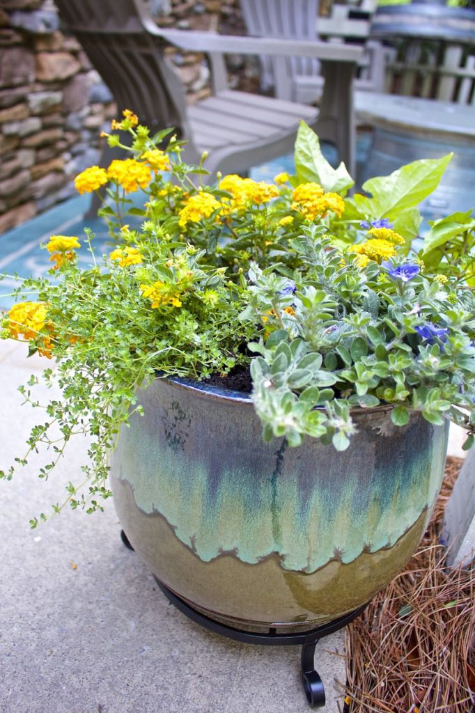 Summer garden and porch tour. Potted plants on the front porch.