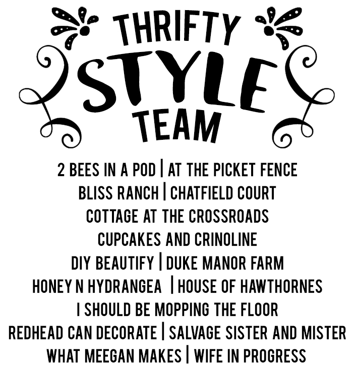 thrifty style team logo_june2017_revised