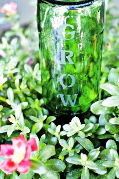 12 DIY Garden Ideas – DIY Housewives Series