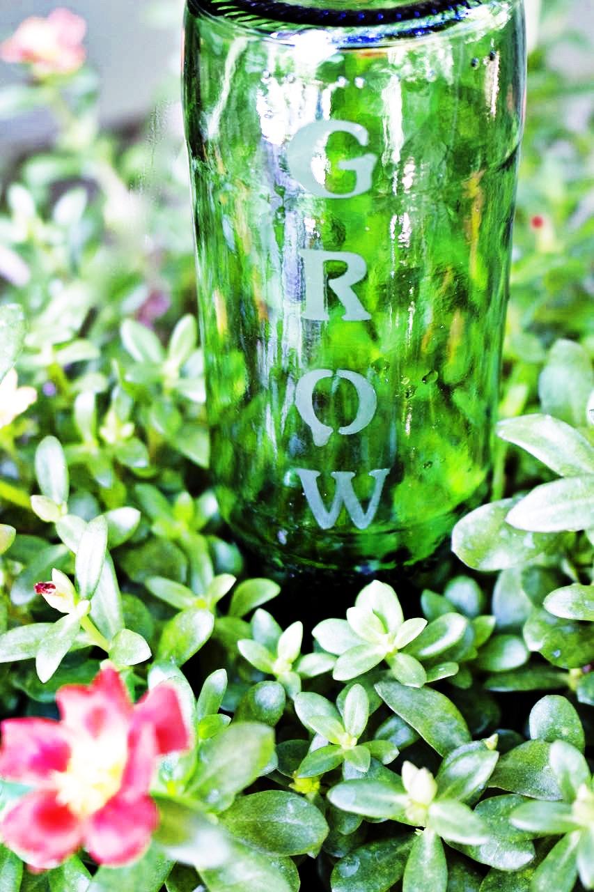 DIY garden ideas. Etched bottles become self watering garden bottles.